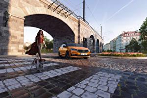 Фотографии Skoda Мосты Собака Оранжевых Металлик Fabia, (Worldwide), 2021 авто Животные