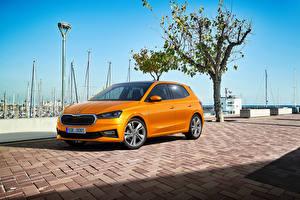 Картинки Skoda Оранжевых Металлик Fabia, (Worldwide), 2021 машина