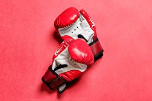 Картинка Розовый фон Двое Перчатках Taekwondo sparring gloves спортивный