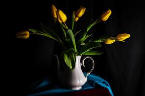Фотография Тюльпан Серый фон Вазе Желтая цветок