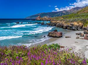 Фото Америка Побережье Океан Гора Камни Калифорния Big Sur Природа