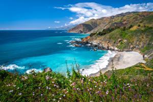 Картинка Штаты Берег Океан Весна Калифорнии Big Sur Природа