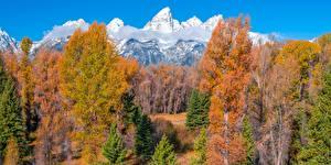 Фотографии США Горы Осенние Деревья Облака Grand Teton National Park, Wyoming Природа