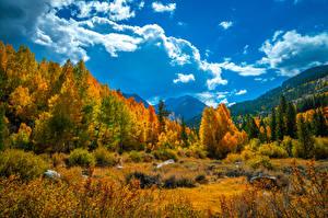 Обои Америка Горы Осенние Пейзаж Калифорнии Деревья Облако Природа