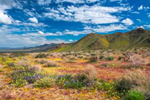 Картинки США Горы Парки Весна Калифорния Облака Joshua Tree National Park Природа