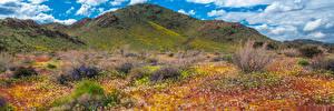 Фотографии США Гора Парки Весенние Панорамная Калифорнии Облака Joshua Tree National Park Природа