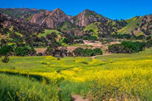 Фотография США Горы Весна Парк Калифорнии Malibu Creek Природа