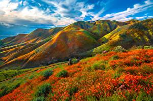 Обои Штаты Горы Весенние Калифорния Облачно Walker Canyon Природа
