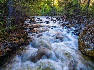 Обои для рабочего стола Штаты Парки Река Камни Йосемити Мха Деревьев Калифорния Природа