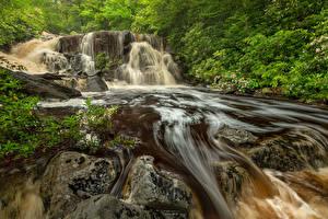 Фото Штаты Парк Водопады Камень Скалы Blackwater Falls State Park Virginia Природа