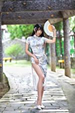 Фото Азиаты Брюнеток Платья Ног Веер молодая женщина
