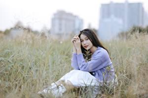 Обои Азиаты Брюнетка Траве Сидящие Размытый фон Руки Девушки