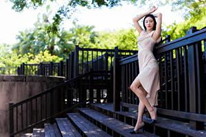 Фотографии Азиаты Поза Платье Ноги молодые женщины