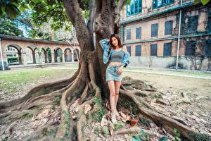 Фото Азиаты Ствол дерева Поза Ног Юбки Майке Взгляд девушка