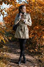 Картинка Осенние Сумка Поза Пальто Брюнеток Meggi молодая женщина