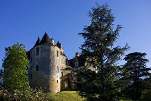 Фотографии Франция Замки Башня Деревьев Chateau de Fayrac