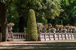 Фотография Германия Потсдам Парки Ограда Кустов Дизайн Park Sanssouci Природа
