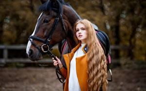 Картинки Лошади Размытый фон Смотрит Шатенка Maksim Romanov Девушки