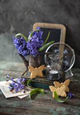 Фотография Гиацинты Печенье Свечи Фиолетовый цветок Еда