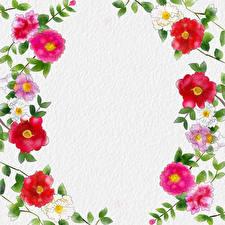 Обои Рисованные Бумага Шаблон поздравительной открытки Цветы картинки