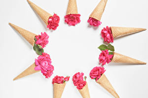 Фотография Розы Белом фоне Вафельный рожок Розовый Шаблон поздравительной открытки цветок
