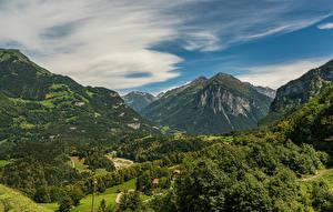 Фотографии Швейцария Гора Лес Альпы Meiringen, Bern