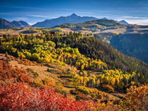 Фото США Осень Гора Пейзаж Дерева Colorado