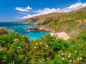 Фотография Америка Берег Океан Горы Калифорнии Big Sur Природа