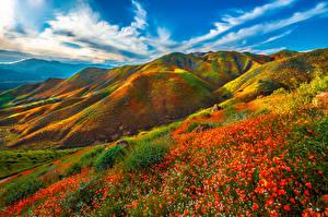 Фотографии Америка Горы Весна Пейзаж Калифорнии Облака Walker Canyon, wildflowers Природа