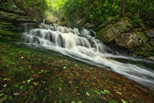 Картинки США Парки Водопады Камни Мхом Скала Blackwater Falls State Park Virginia Природа