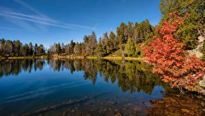 Фотография Андорра Озеро Осенние Дерева Estany de la Nou