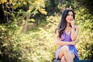Обои Азиатки Размытый фон Брюнетки Смотрит Сидит Платье Руки Ноги девушка