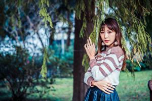 Картинка Азиатки На ветке Рука Смотрит молодая женщина