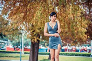 Картинка Азиатки Брюнетки Поза Платье Размытый фон девушка