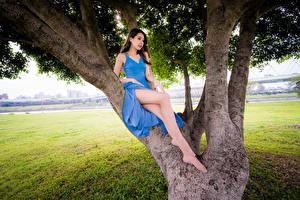 Фотография Азиаты Платье Ноги Деревья молодая женщина