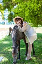 Обои для рабочего стола Азиатки Лошадь Поза Шляпа молодая женщина Животные