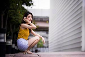 Картинка Азиаты Позирует Сидящие Смотрят Размытый фон молодые женщины