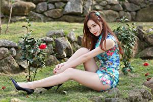 Фотография Азиатка Сидя Платья Ноги Туфлях Шатенка молодые женщины
