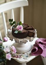Фотография Торты Шоколад Роза Стулья Ваза Пища