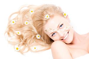 Картинки Ромашка Белый фон Взгляд Улыбка Волосы Девушки