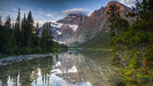 Картинки Канада Парки Гора Озеро Ель Мха HDRI Jasper National Park Mount Edith Cavell