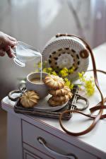 Обои Кофе Молоко Печенье Чашке Продукты питания