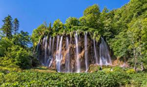 Фотография Хорватия Водопады Дерево Galovac waterfall