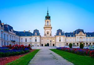 Фото Венгрия Дворец Тропинка Газоне Дизайн Музей Kesthey, Festetich Palace Города