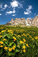 Фотография Италия Горы Альп South Tyrol, Dolomites Природа