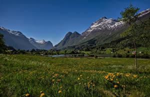 Картинки Норвегия Горы Пейзаж Луга Olden