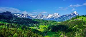 Фотография Панорама Пейзаж Лес Австрия Долина Альп