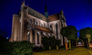 Фото Польша Храмы Церковь Ночные Дерево Pelplin Cathedral Basilica Города
