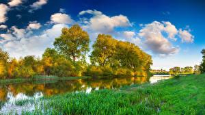 Фотографии Река Лето Траве Деревья Природа