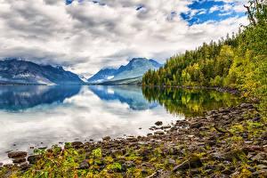 Фото Америка Парки Горы Озеро Пейзаж Облако Дерево Lake McDonald, Glacier National Park Природа